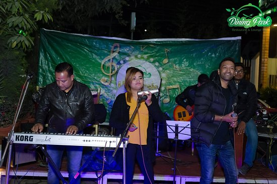 Musical Performance at Dining Park