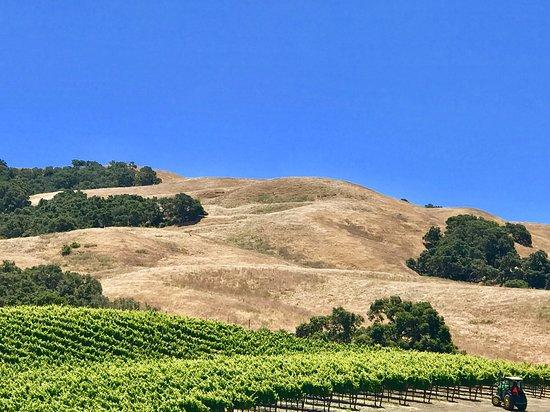 Sta. Rita Hills near Santa Barbara, CA