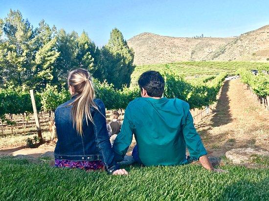Orfila Winery & Vineyards near San Diego, CA