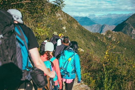 Freeland Hiking Co.