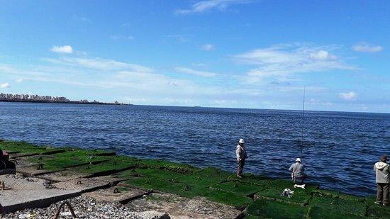 Alexandria, Egyiptom: Local People Fishing