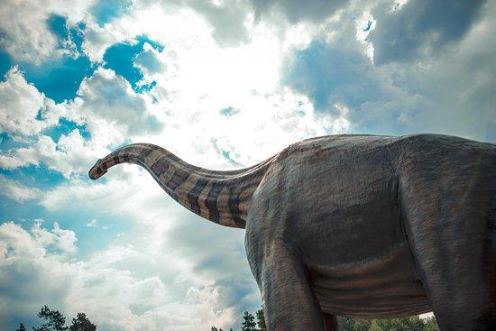 Rehburg-Loccum, Alemanha: Giraffatitan! Auf dem Naturdenkmal Dinosaurierfährten!