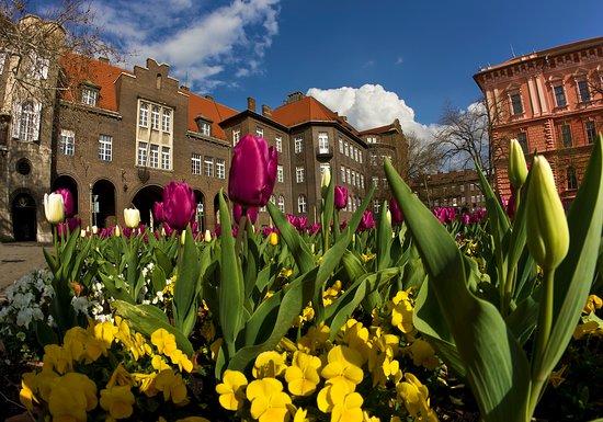 Szeged, Hungary: Aradi Martyrs Square  Picture: Balázs Papdi