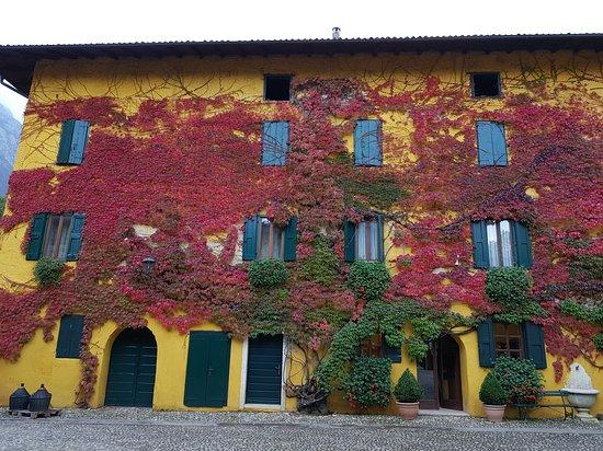 """""""villaggio"""" Tenuta San Leonardo"""