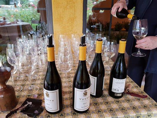 Tenuta San Leonardo: Vini