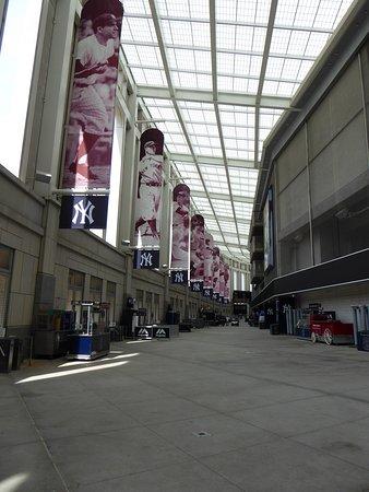 Inside The Stadium