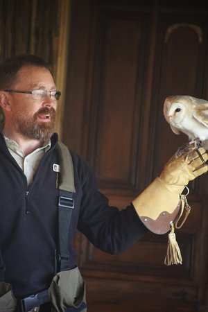 Highland Safaris: informative, knowledgeable session, met Ossian the owl