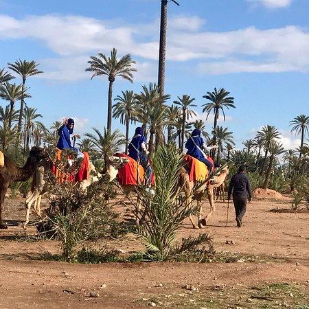 δωρεάν dating Μαρόκο γυναίκα