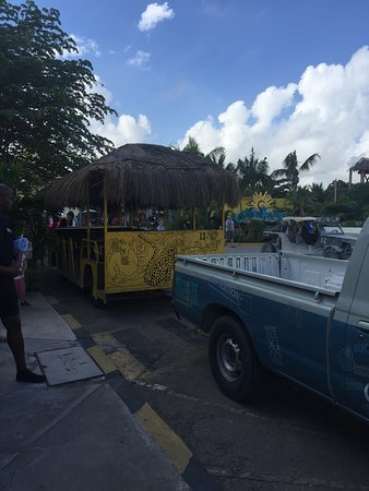 Shuttle to Mahahual $4 a person