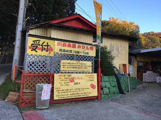江田島市, 広島県, 川西観光みかん園の入口。