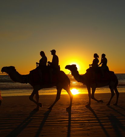 Sahara Morocco Tour: Camel Ride trip with the sunset view....fabulous