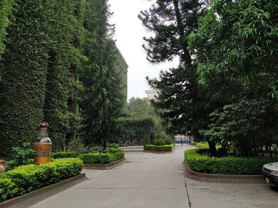 Rangpur صورة فوتوغرافية