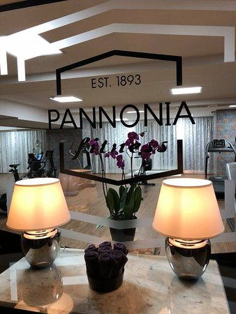 ‪Pannonia Wellness & Fitness‬