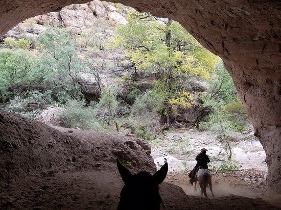 Tierra Chamahua EcoAdventures at Rancho Los Banos 사진
