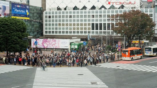 Shibuya Crossing as seen from Starbucks