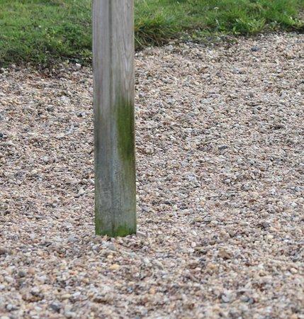 Parcours de Sante de la ville de Champforgeuil: Le module : Echelles horizontales