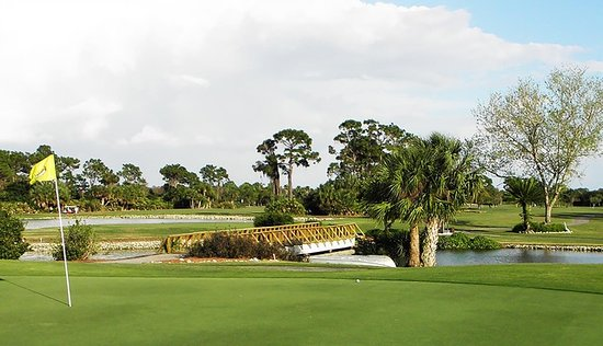 Myakka Pines Golf Club (Englewood) - 2020 What to Know ...