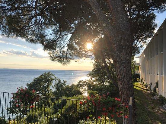Hotel Riviera & Maximilian's: L'ala nuova, immersa nel parco a picco sul mare
