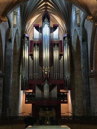 What an organ!