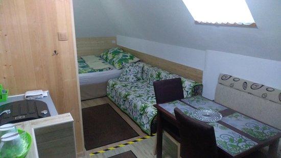Pokoj 3. Plně vybavený pokoj s vlastní koupelnou WC , kuchyňský kout ,lednice , mikrovlnná trouba, kuchyňské potřeby. Pokoj je určen až pro 4 osoby