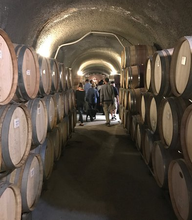 Wine cave tour at Eberle Winery in Paso Robles, CA