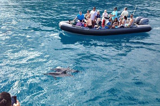 Na Pali Coast Snorkel en Rafting ...