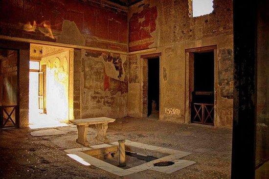 Excursión de medio día a Herculano...