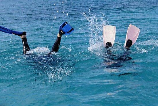 Plongée sous-marine à Las Terrenas...