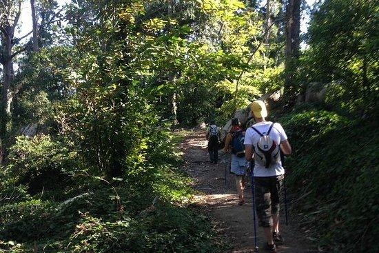 Vandring i Sintra Natural Park