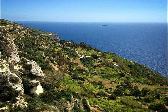 Tour Panoramico di Malta: Palazzo