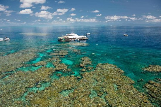 Great Barrier Reef Day Cruise fra...