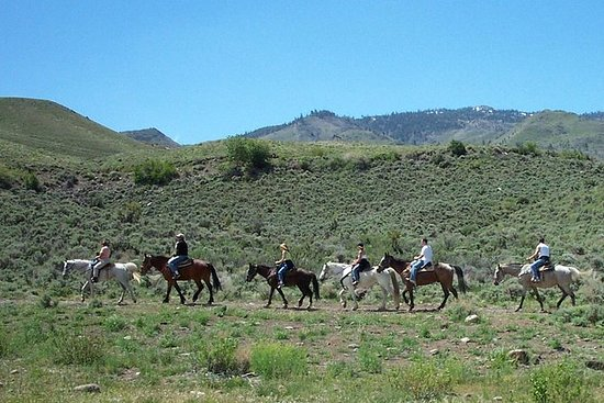 Horseback Riding Adventure from Reno