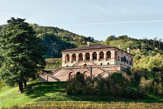 Boleto de entrada a Villa dei Vescovi