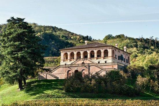 Villa dei Vescovi Entrance Ticket