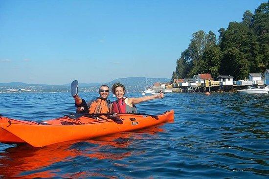 Tour de kayak de 3 horas en el fiordo...