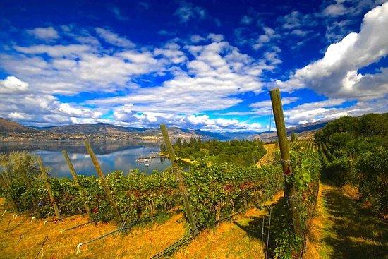 Naramata Wine Tour med Gourmet Lunsj