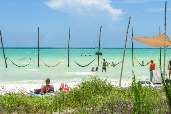 Holbox Island Tour from Playa del...