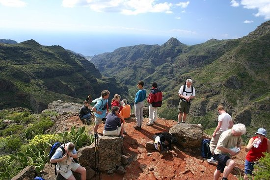 La Gomera's Forest of Fables National...
