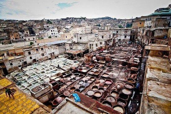 Fulldags Private Tour of Fez