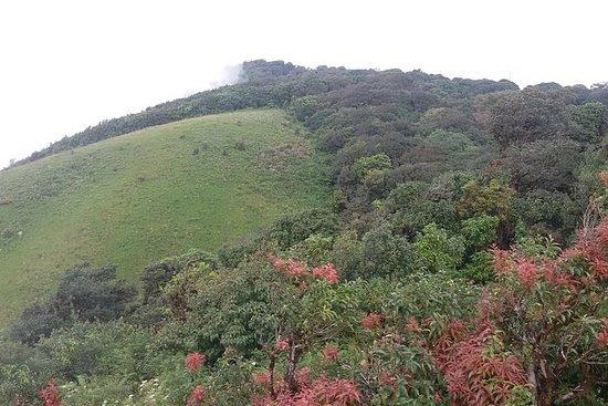 小组Doi Inthanon国家公园和Kiew Mae Pan小径从清迈