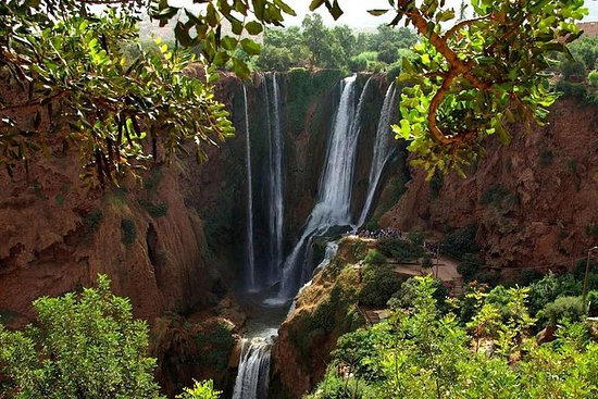 Marrakech to Ouzoud Waterfalls Day...