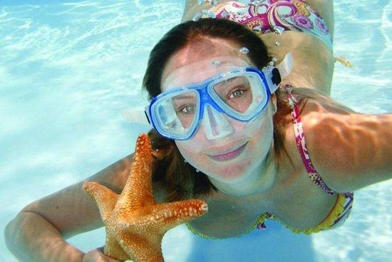 Key West Snorkelen