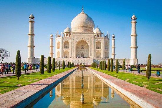 Tour privado de un día a Agra con Taj...