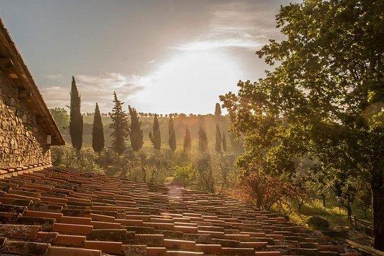 Buongiorno Tuscany Wine Tour nella