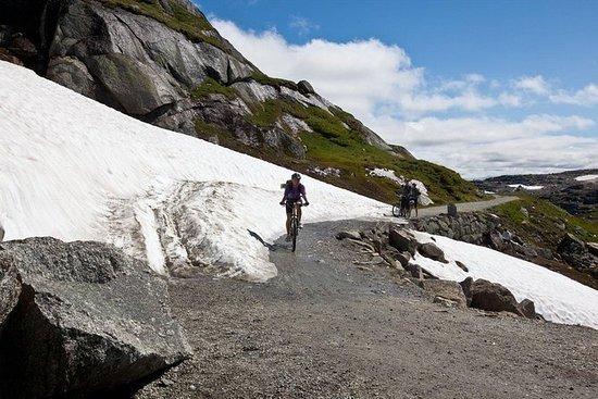 Sykkeltur langs den naturskjønne...