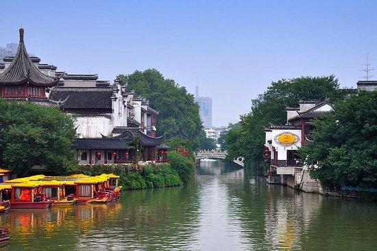 Tour de 4 horas en Nanjing a la tumba...