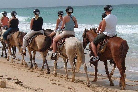 Meio dia a cavalo na praia