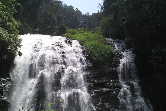 Private Custom Tour: Coorg...