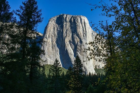 Yosemite One Day Tour by Train and Bus...