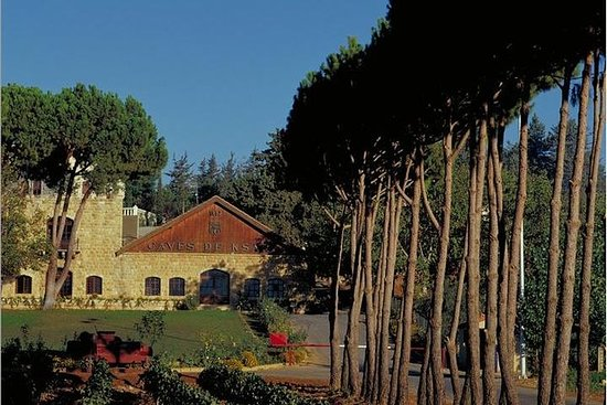Private Tour - Full Day Wine Tasting Tour - Day Trip from Beirut: Private Tour - Wine Tasting Tour - Day Trip from Beirut